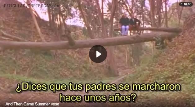 CLIC PARA VER VIDEO Y Luego Llego el Verano - And Then Came Summer - PELICULA - EEUU - 2000