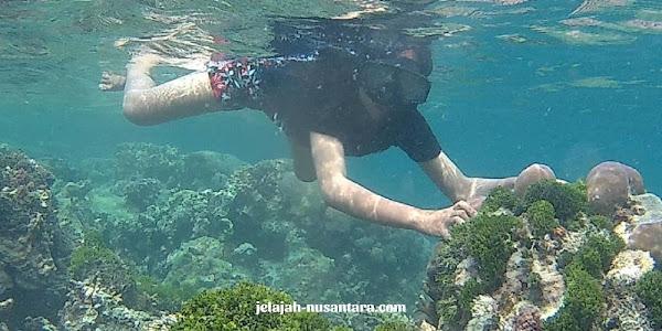 fasilitas wisata private trip pulau harapan