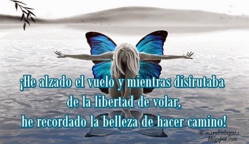 Belleza, Decisiones, Libertad, Oportunidades de la vida, Sentimientos, Vivir Para Volar,