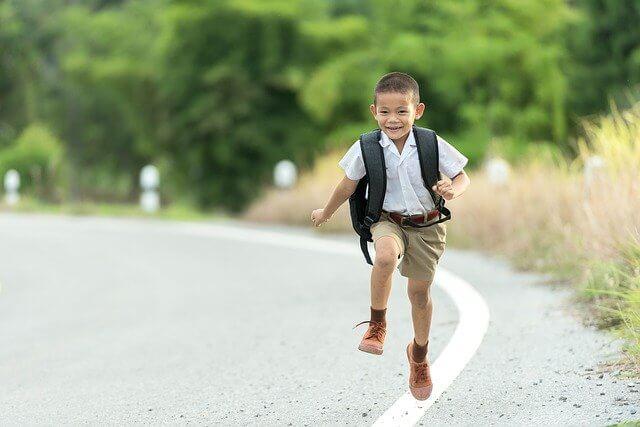 JOYS AND SORROWS OF SCHOOL LIFE