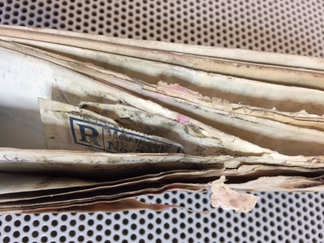 Bundle of paper documents affected by mould.