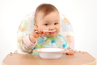Babies Should  Eat Organic Food