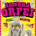 Il Circo Sandra Orfei di Equestre Vassallo riparte da Caltanissetta