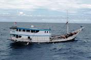 978 Kayu Merbau Illegal Diamankan Diperairan Selayar