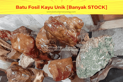 batu fosil kayu jati warna kuning