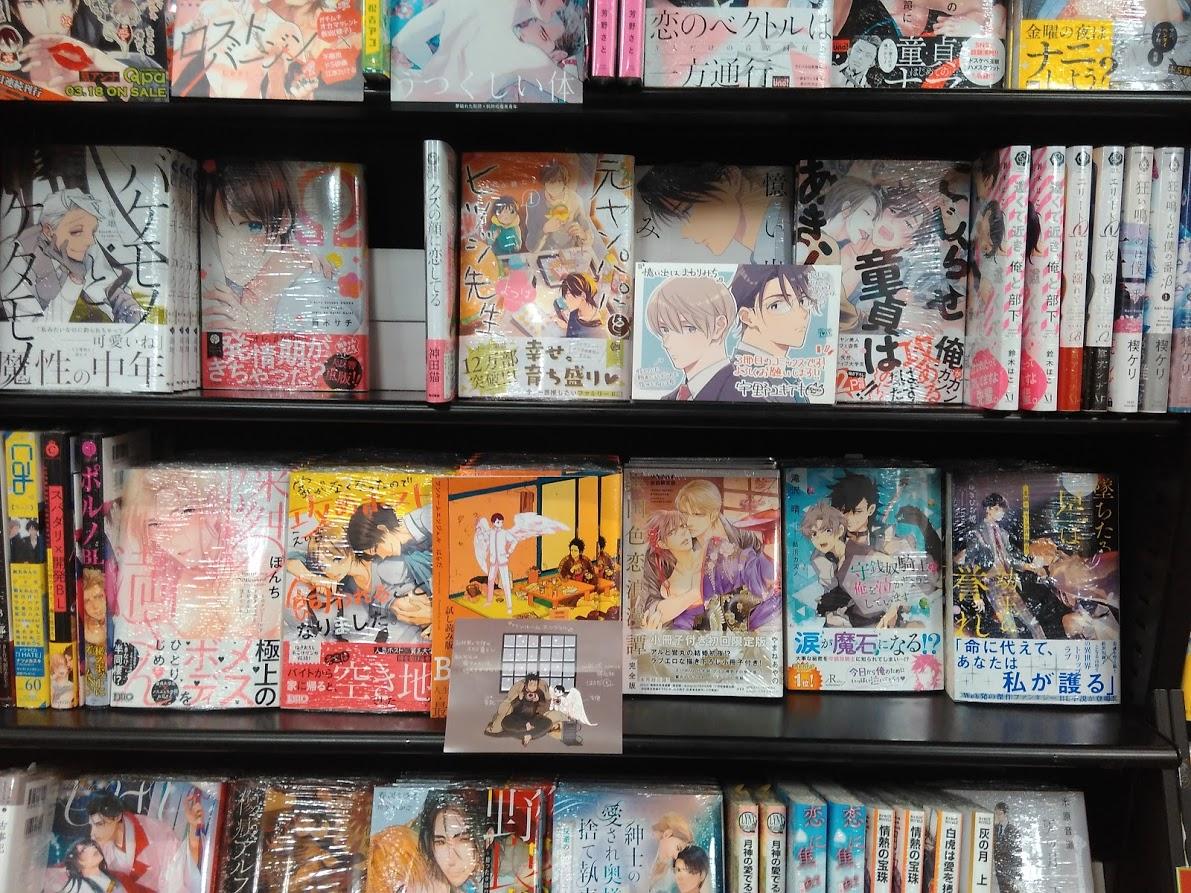 Манга в Японии. 18+