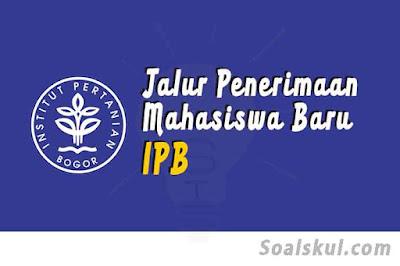 Jalur penerimaah mahasiswa baru ipb
