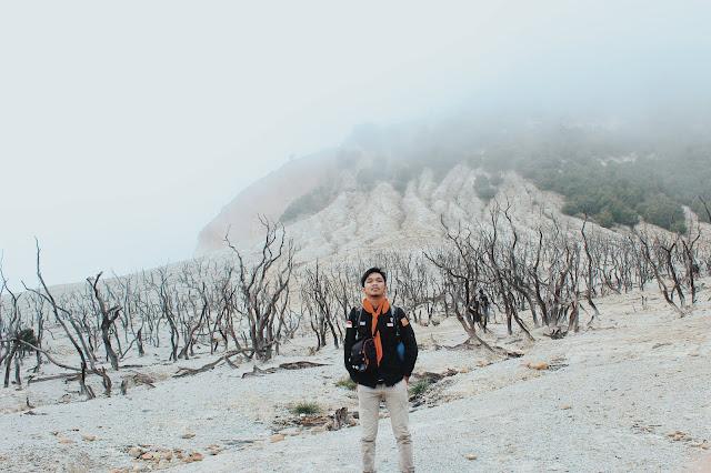 hutan mati papndayan