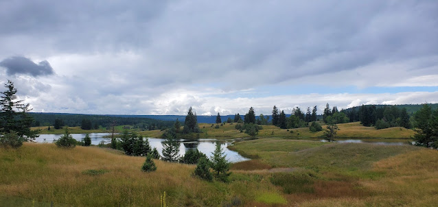 Beautiful view of a lake from Caribou Highway just passed Williams Lake
