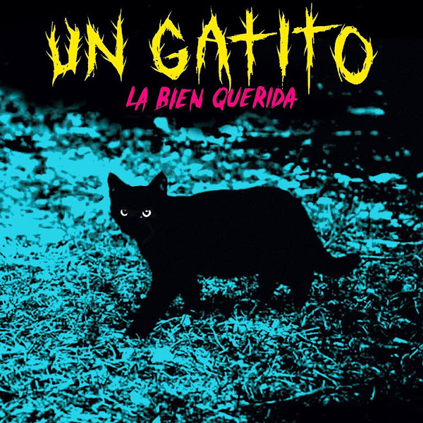LA BIEN QUERIDA - Un gatito