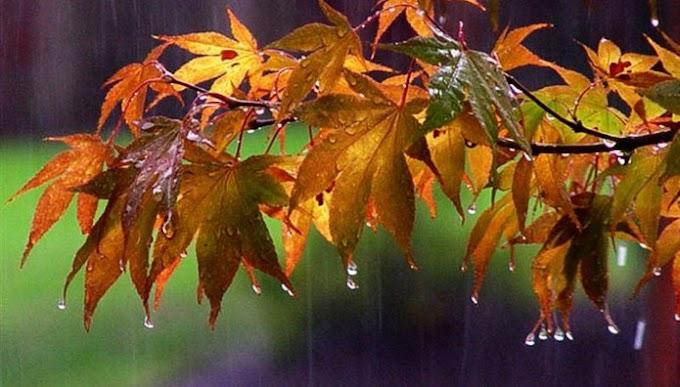 Νεφώσεις και βροχές για την Κυριακή