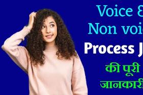 Voice and Non Voice Process Job Kya Hai details in Hindi