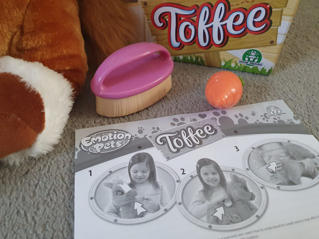 toffee-the-pony-accessories