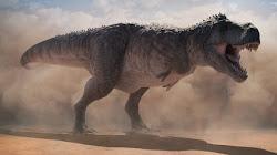 Tyrannosaurus Rex tử chiến Voi Bush châu Phi, ai là kẻ chiến thắng?