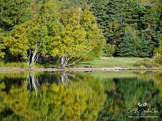 Autumn Reflections Photo