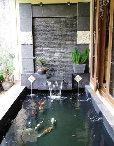 tukang kolam ikan koi minimalis di sidoarjo berkualitas
