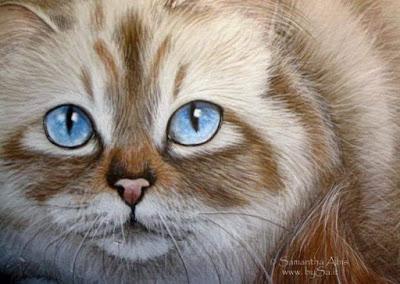 dipinti di gatto camilleri