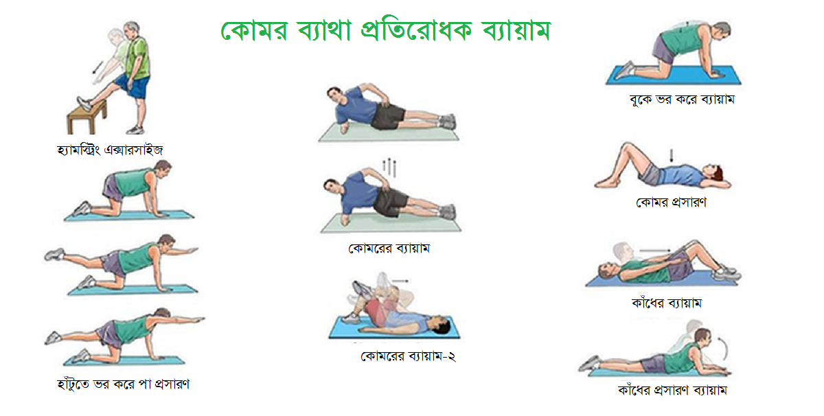 exercise for low back pain in bangla