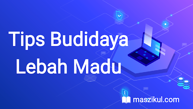 Tips Budidaya Lebah Madu