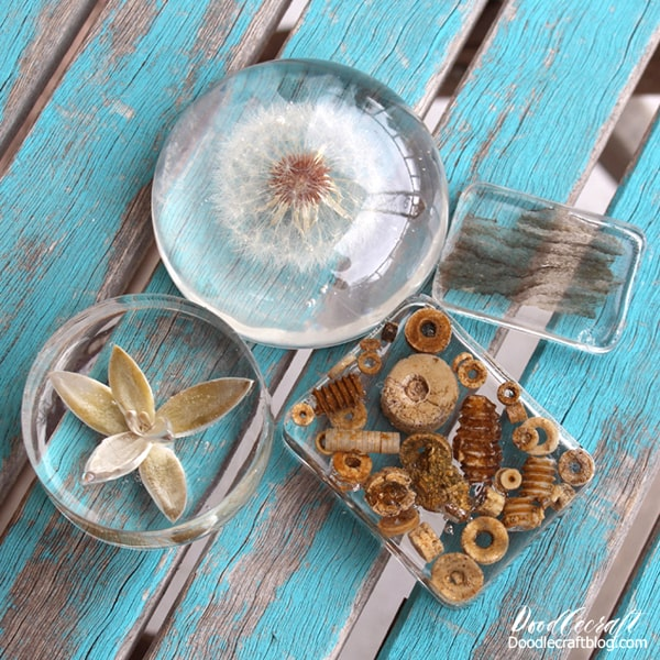 Make resin paperweights with things around the yard and EasyCast Resin