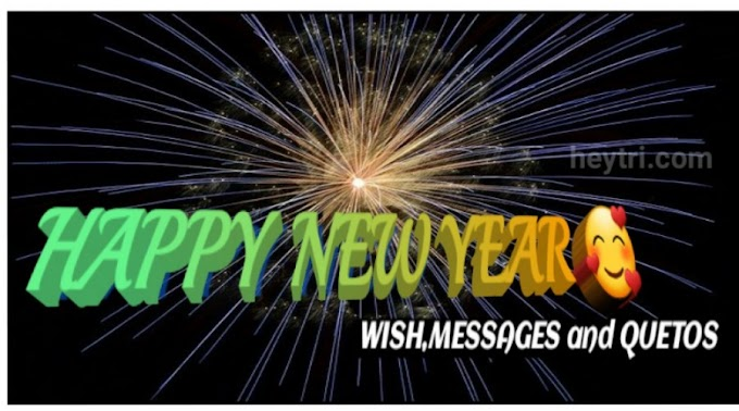 Top 30 Happy New year wish Message quetos in hindi 2021.
