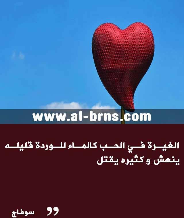 اقوال عن الحب (2)