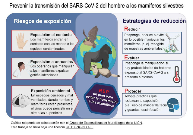 Fuente: UICN http://www.iucn-whsg.org/sites/default/files/Es_WHSG%20y%20OIE%20COVID-19%20Directrices.pdf