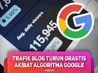 Trafik Blog Turun Drastis Saat Update Algoritma Google 2019