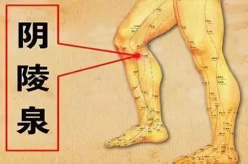 經絡健脾法,就可以迅速增強人體的氣血 - 穴道經絡引導
