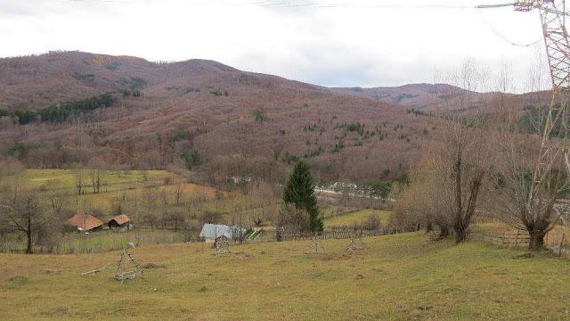 Cazare Pensiune la munte Valea Doftanei - Cazare vila Scoica Valea Doftanei - Prahova