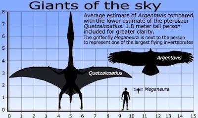 Quetzalcoatlus  Vs Argentavis