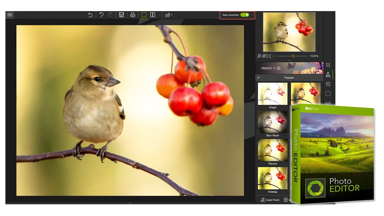 تحميل برنامج InPixio Photo Editor 10.4.7543.16716 نسخة كاملة