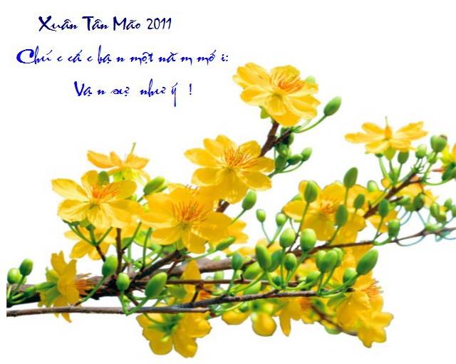 Chúc mừng Xuân mới 2011. Một năm mới an lành, vạn sự như ý