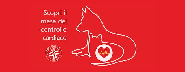 visita cardiaca cane gatto