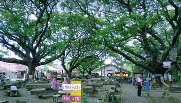 Wisata Taman Trembesi Kota Madiun
