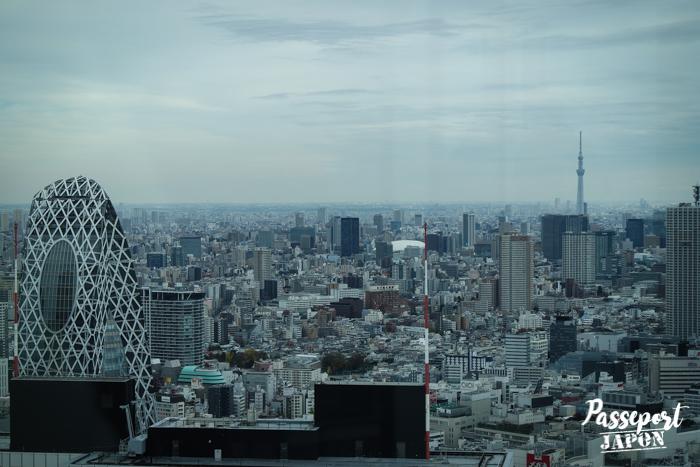Vue sur la Tokyo Skytree depuis l'observatoire sud