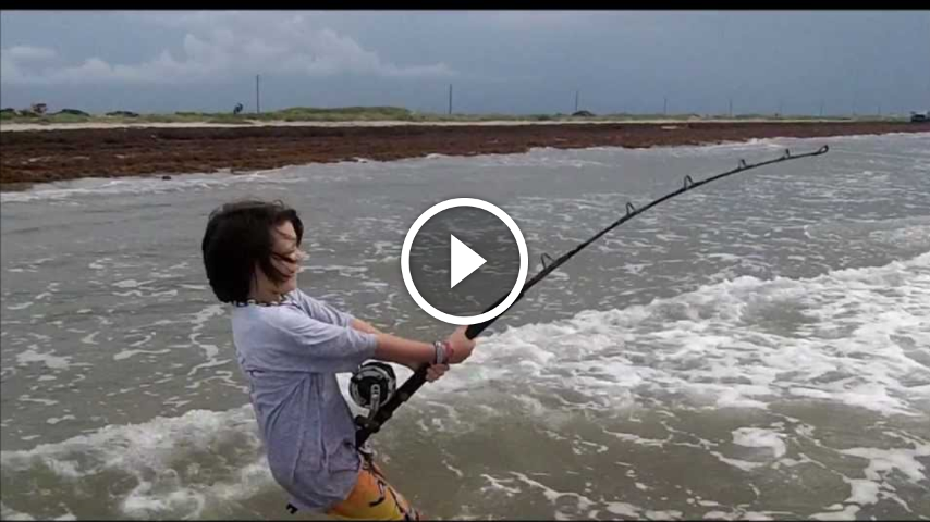 Surf fishing for big bull sharks how to fish tips for Surf fishing for sharks