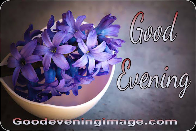 Good evening images with flowers