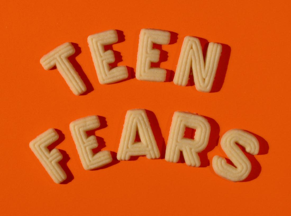 joyful public speaking from fear to joy stage of life survey of  stage of life survey of us teens
