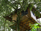 Tree House in Munar