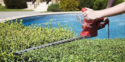 Best Cordless Hedge Trimmer Reviews