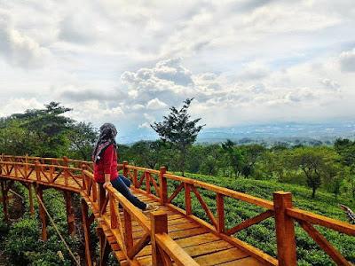 Bukit Kuneer Malang