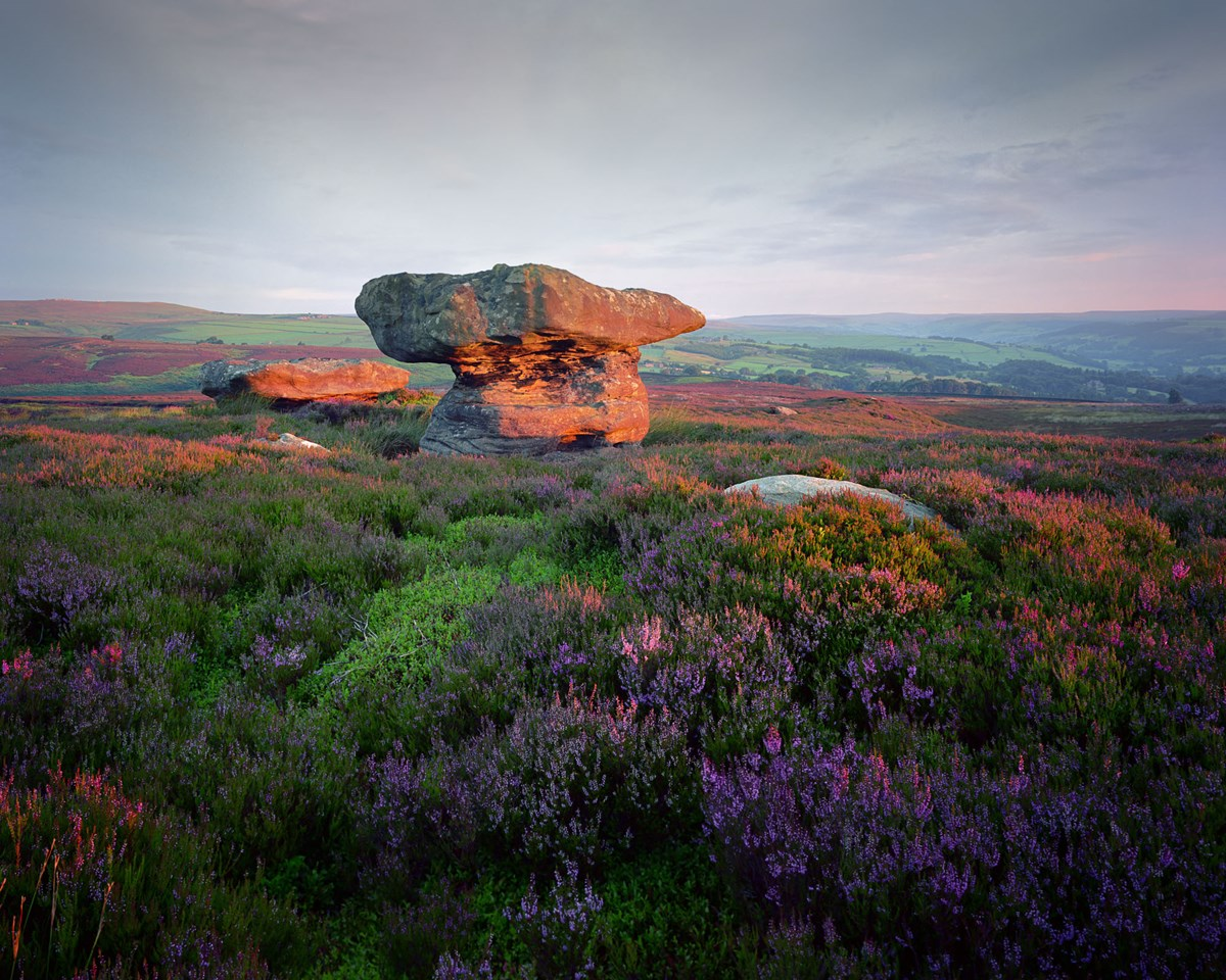Tristan Campbell - Photography - Stones