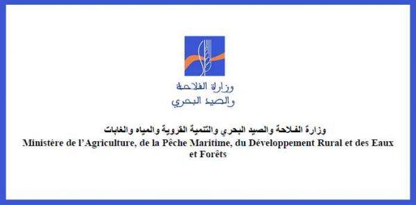 وزارة الفلاحة والصيد البحري والتنمية القروية والمياه والغابات - قطاع الفلاحة
