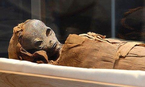 Alien Mummy Found In a Pyramid – Archaeologists Baffled 198651_470956866277807_268536632_n