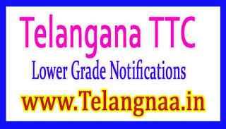 Telangana TTC (Lower Grade) Revaluation Notification