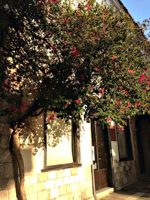 Μικρό, στενό δρομάκι -Ναύπλιο