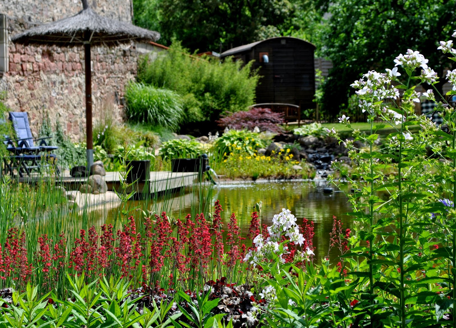 Schwimmteichgarten