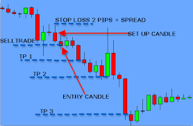 Forex the holy grail pdf