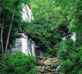 Pengertian Bioma,Macam-macam Bioma dan Ciri-ciri Masing-Masing Bioma Tersebut